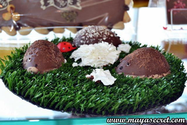 arici de ciocolata